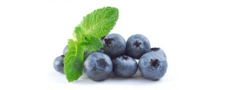 ประโยชน์ ของ ผลไม้ตะกูลเบอร์รี่