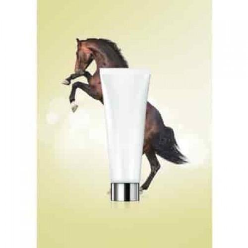 Horse Essence