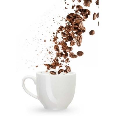 ส่วนประกอบ ผลิตภัณฑ์ประเภทกาแฟ(Coffee)