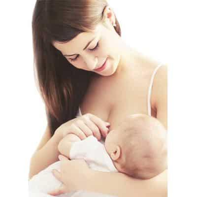 ส่วนประกอบ ผลิตภัณฑ์กระตุ้นน้ำนม (Stimulate milk)