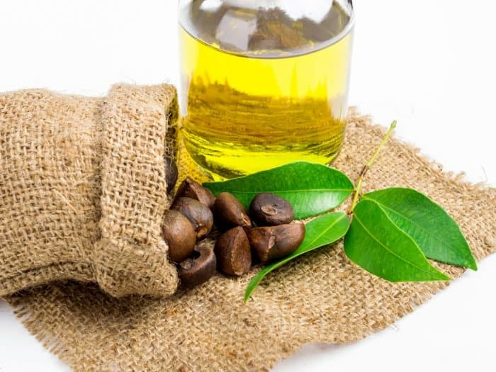 Camellia oil (Deodorized Organic)