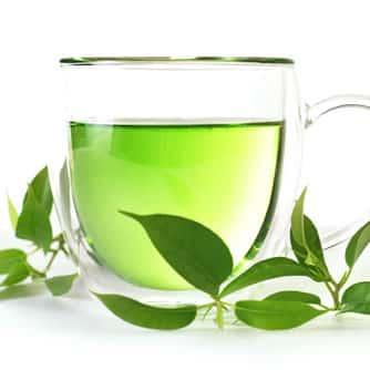 Green Tea Extract  ( สารสกัดจากชาเขียว)